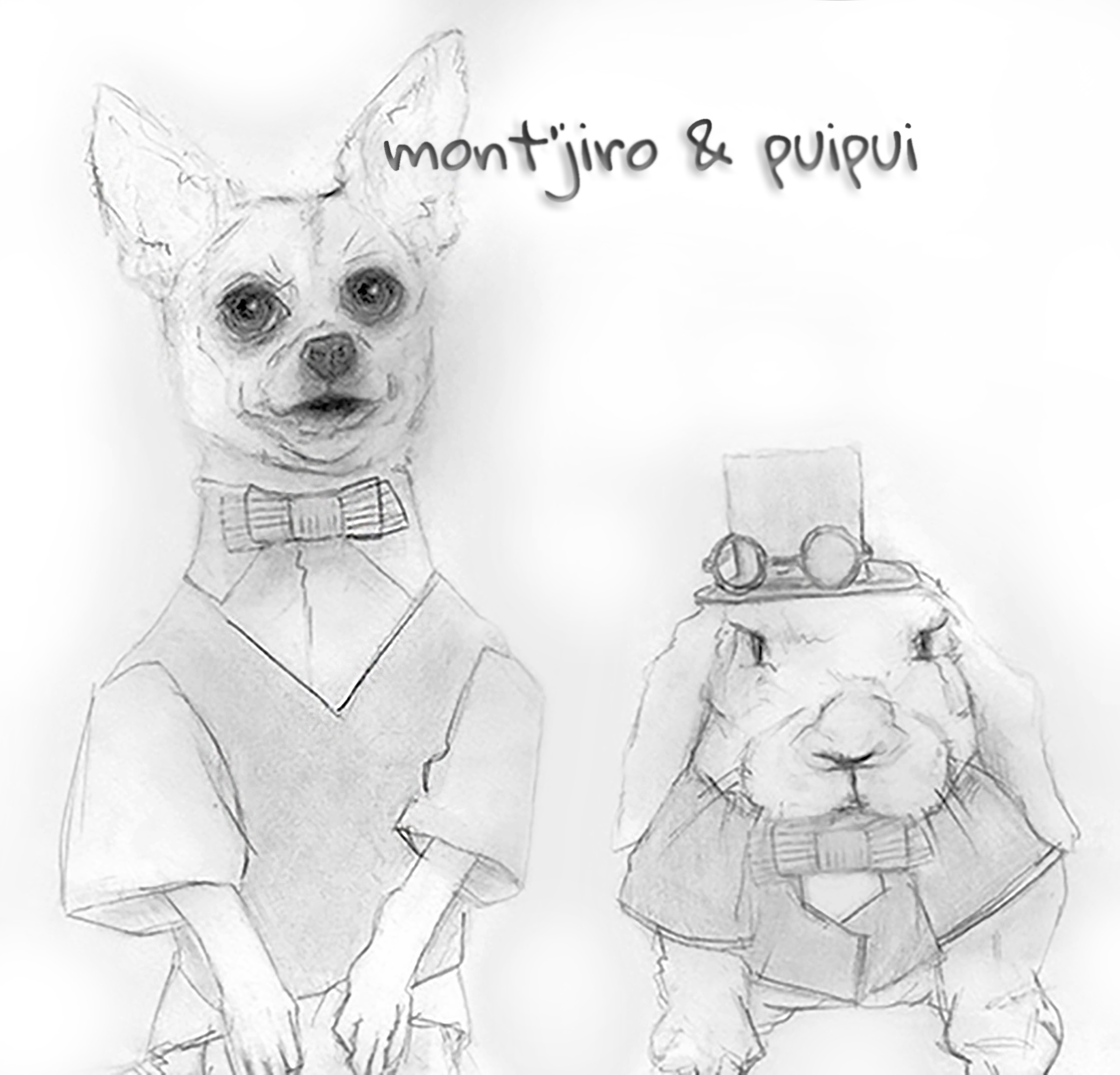 mont'jiro the chihuahua & puipui the rabbit - cute circus creature couture follow feature